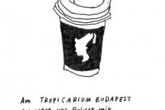 07-Cappucino-von-Robert